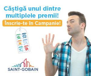 Vitraj Saint Gobain